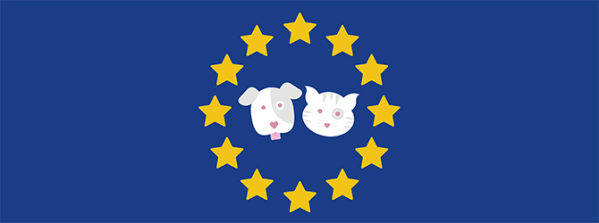 brexit and the pet passport scheme hero image