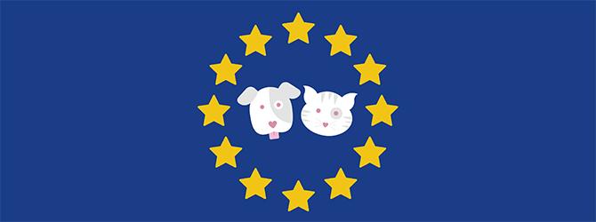 Pet travel scheme wendover heights veterinary centre wendover.