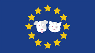 brexit and the pet passport scheme thumbnail
